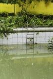 Dirty Swimming Pool Stock Photo