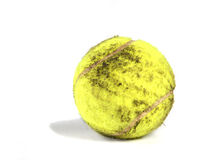 Dirty Tennis Ball Stock Photography