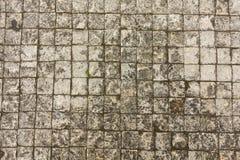 Dirty texture cobblestones. Up close. Stock Photos