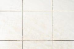 Dirty tile on bathroom floor Royalty Free Stock Photos