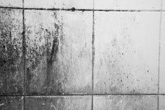 Dirty tile Stock Image