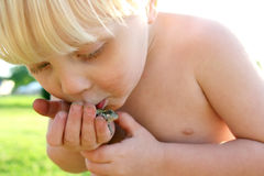 Dirty Toddler Playing Outside Kissing Frog Royalty Free Stock Images