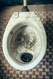 Dirty toilet Stock Images