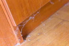Dirty unswept floor dust cobwebs. Dirty unswept hardwood parquet floor with dust and cobwebs Royalty Free Stock Image