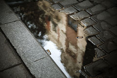 Dirty urban puddle with cigarrettes in warm tone Stock Photography