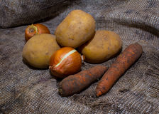 Dirty vegetables on burlap Stock Images