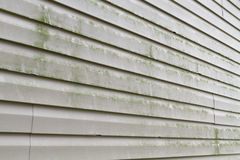 Dirty Vinyl Siding Needs Power Washing. Green algae, mold, and dirty grime on a section of a residential homes' vinyl siding exterior. The green algae typically Stock Photos