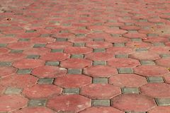 Dirty of walkway brick in octagon shape. Octagon brick, orange walkway Royalty Free Stock Photo