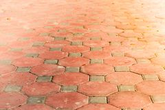 Dirty of walkway brick in octagon shape. Octagon brick, orange walkway Stock Photos