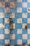 Dirty wall in abandoned home. Royalty Free Stock Photo