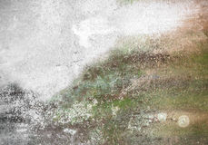 Dirty wall with mold Royalty Free Stock Images