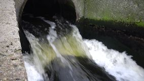 Dirty water flows from the pipe into a natural pond. Environmental pollution. Sewage, treatment facilities, dirty foam, bacteria stock video footage