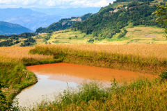 Dirty water pool in a mountain landscape Royalty Free Stock Image