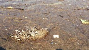 Dirty water texture. stock footage