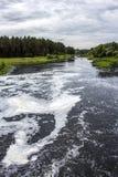 dirty water zanieczyszczenie zielona nutowa woda Zdjęcie Stock