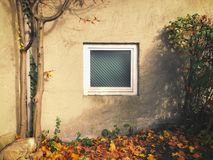 Dirty window behind an old garage in autumn Royalty Free Stock Photos