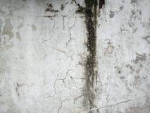 Dirtyness et humidité dans le mur photographie stock libre de droits
