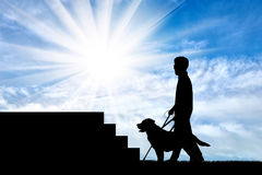 Disabled blind with cane and dog guide in front of stairs day Royalty Free Stock Photo