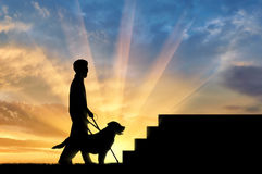 Disabled blind with cane and dog guide in front of stairs sunset Royalty Free Stock Photos