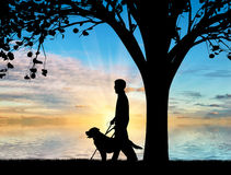 Disabled blind with cane and dog guide under tree near sea sunset Royalty Free Stock Images