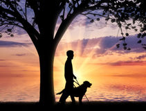 Disabled blind with cane and dog under tree near sea sunset Stock Photo