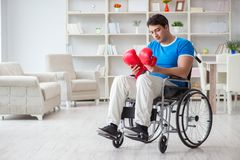 The disabled boxer at wheelchair recovering from injury Stock Photos