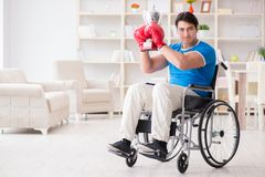 The disabled boxer at wheelchair recovering from injury Stock Image
