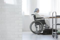 Disabled cancer patient in hospital. Disabled cancer patient sitting in a wheelchair at the hospital with her faithful black dog Royalty Free Stock Photos