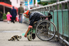 Disabled humanity standards of a modern society. UZHGOROD - JULY 20 : disabled female beggar trying to feed a cat July 20, 2008 in Uzhgorod, Ukraine. Disabled Stock Photography