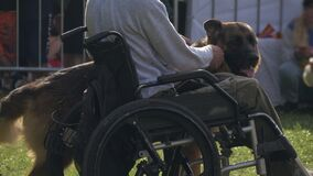 Disabled man with his service dog on a walk. Man in wheelchair and guide dog.