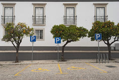 Disabled parking. Repeated traffic signs in a parking lot empty Stock Photography