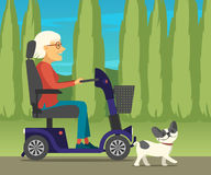 Disabled woman in electric mobility scooter driving at the park with her French bulldog. Mature lady in power wheelchair strolling with dog on nature Stock Photo