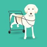 Disablen lägger benen på ryggen hunden med hjulstol Arkivfoto