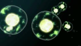 Disaccordi delle cellule illustrazione vettoriale