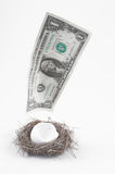 Disappearing Nest Egg Royalty Free Stock Image