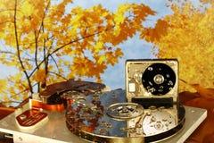 Disassembliertes HDD im feuchten Herbstholz stockfotografie