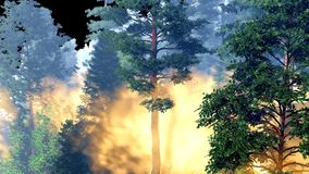 Disaster with fire in the forest 3d rendering Stock Image
