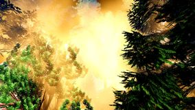 Disaster with fire in the forest 3d rendering. Disaster with fire in the forest Royalty Free Stock Photos