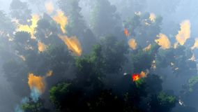 Disaster with fire in the forest 3d rendering. Disaster with fire in the forest Royalty Free Stock Photo