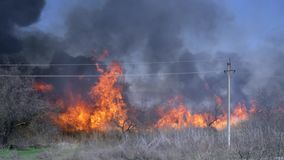 Disaster, wildfire and lot black mist against blue sky. By day stock footage