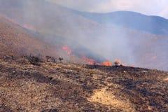 Disastre da queimadura Imagens de Stock Royalty Free