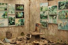 Disastri naturali fotografia stock libera da diritti
