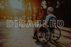 Disattivato in sedia a rotelle L'uomo gode della natura in parco fotografie stock libere da diritti