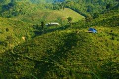 Disboscamento per agricoltura, mutamento climatico Immagini Stock