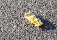 Discarded apple core. On the road Stock Image