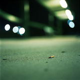 Discarded Cigarette At Night. Cigarette on the concrete at night in an urban environment stock photography