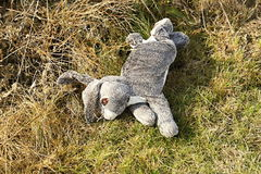 Discarded grey plush rabbit Royalty Free Stock Images