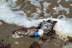Discarded plastic water bottle in the sea. Royalty Free Stock Image