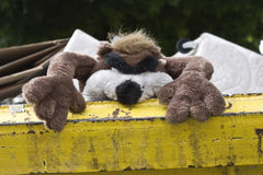 toy in skip. An unwanted furry toy thrown into a skip Royalty Free Stock Photography