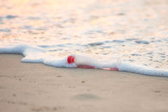 Discarded water bottle laying on a beach. Stock Images